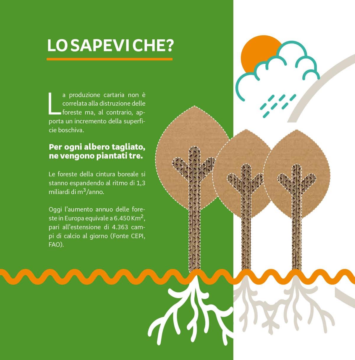 Gifco: il cartone ondulato e la riforestazione