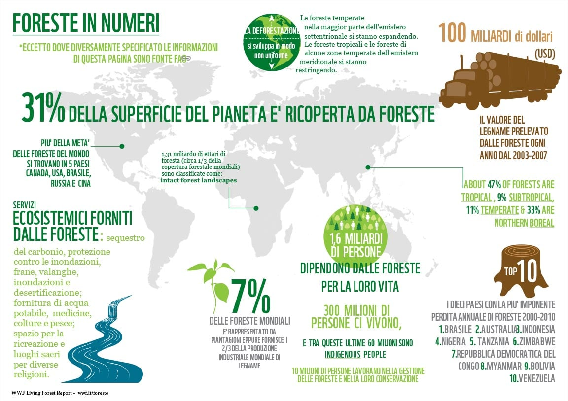 WWF: infografica numeri foreste